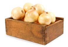 Onions in an old box Royalty Free Stock Photos