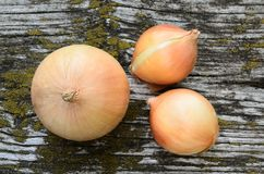 Onions on an old wooden background Stock Photo