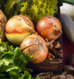 Onions in old wooden box, top view Royalty Free Stock Images