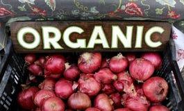 onions organic red Στοκ φωτογραφίες με δικαίωμα ελεύθερης χρήσης