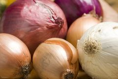 Onions and other vegetables Royalty Free Stock Photo