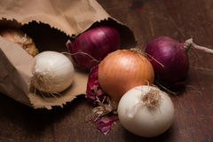 Onions out of a paper bag Royalty Free Stock Images