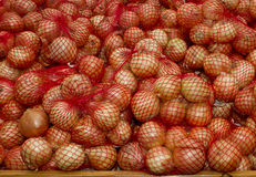 Onions packed Stock Photography