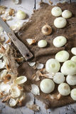 Onions with peel and some peeled on vintage rustic background with burlap and knife Stock Images