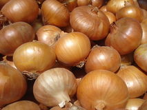 Onions pile Royalty Free Stock Photography