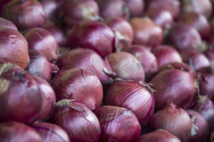 Onions. Piled red onions at a farmers market royalty free stock image