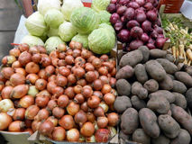 Onions, potatoes, cabbage and parsnip Royalty Free Stock Image