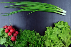 Onions, radishes, lettuce, parsley, dill, coriander, on a wooden Royalty Free Stock Photos