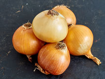 Onions. Raw onion on the black background Royalty Free Stock Photo