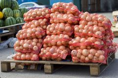 Onions in red nets are prepared for sale and lie under the open sky. stock photos