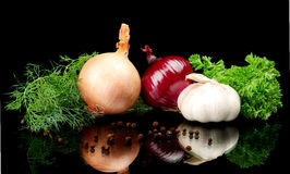 Onions,red onions,dill,pepper,allspice and garlic isolated on black Royalty Free Stock Image