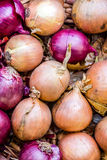 Onions and red onions Royalty Free Stock Photography