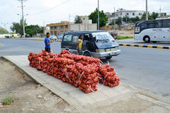 Onions For Sale. Al Zarqa, Jordan - May 29, 2015: Local farmers taking to the streets to sell their freshly picked crop of onions stock photos