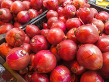 Onions for sale at Farmers Market Stock Image