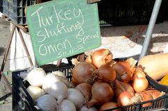 Onions for sale at a farmers market for Thanksgiving. White and yellow onions on sale at a farmers market for turkey stuffing for Thanksgiving Royalty Free Stock Image