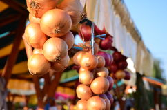 Onions for sale on a market during the harvest days Royalty Free Stock Photos