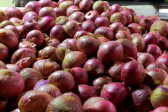 Onions on sale Royalty Free Stock Images