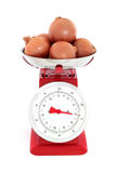 Onions on Scales. Onion vegetables weighing three kilos on a red metal set of retro scales against white background stock photo