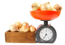 Onions on scales and in a box Royalty Free Stock Image