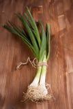 Onions sheaf Royalty Free Stock Photo