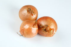 Onions. Some onions with white background Royalty Free Stock Images