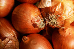 Onions. Some onions in a wooden box Royalty Free Stock Image