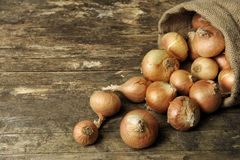Onions spilling out of a jute sack Stock Photo