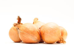 Onions stack Royalty Free Stock Image