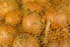 Onions stored in the grid Royalty Free Stock Photos