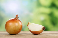 Onions in summer with copyspace Royalty Free Stock Photo