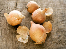 Onions on the table Royalty Free Stock Photo
