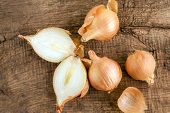 Onions on the table Royalty Free Stock Photography