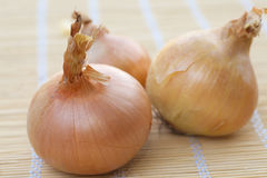 Onions on table. Ripe onions on kitchen table Royalty Free Stock Image