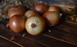 Onions close up on the table royalty free stock photography