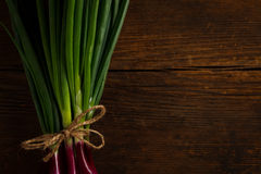 Onions tied with a rope royalty free stock image