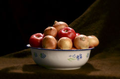 Onions and tomatoes in a bowl Royalty Free Stock Images