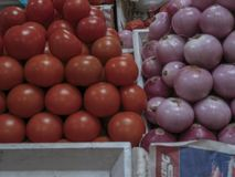 Onions and tomatoes ina market royalty free stock photos