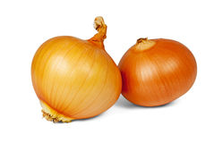 Onions. Two brown onions isolated on white background Stock Images