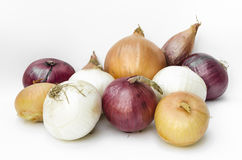 Onions. Variety of onions, vegetable texture Stock Photos