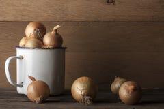 Onions with vintage iron mug Stock Images