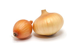 onions on a white background Royalty Free Stock Image