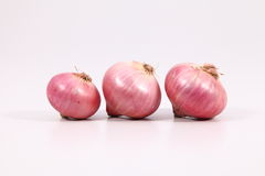 Onions. Are on white background Royalty Free Stock Image