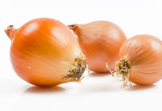 Onions on a white background Stock Photography