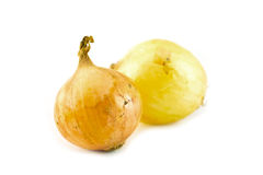 Onions on a white background Stock Photos