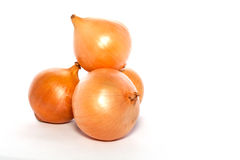 Onions on White Stock Image