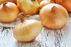 Onions on white rustic wooden background Stock Images