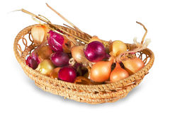 Onions in wicker basket Royalty Free Stock Photography