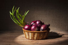 Onions in a wicker basket Royalty Free Stock Photography
