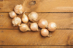 Onions on wood Royalty Free Stock Image