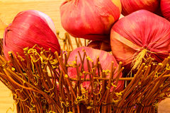 Onions in wooden basket Royalty Free Stock Photo